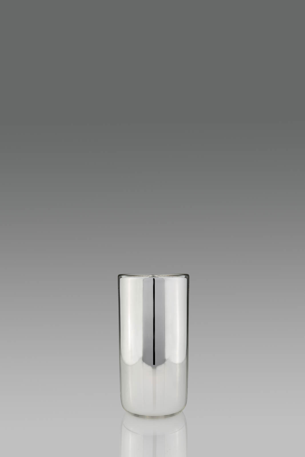 Silvered Glass Vase - Glass / Silver